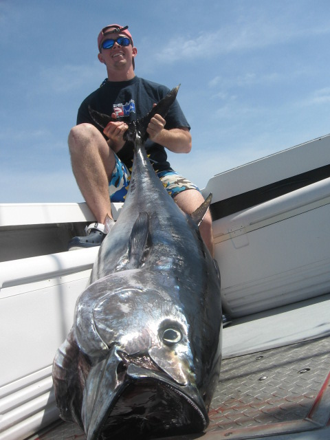 tuna fishing charters in massachusetts catch bluefin tuna On tuna fishing season