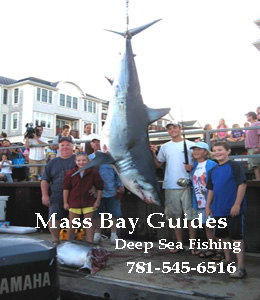 The Mayo Family Catches the worlds Largest Male Mako Shark with Taylor Sears