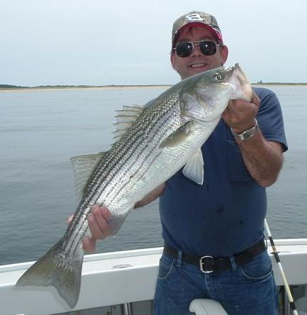Striped Bass Fishing on the Shoals of Cape Cod