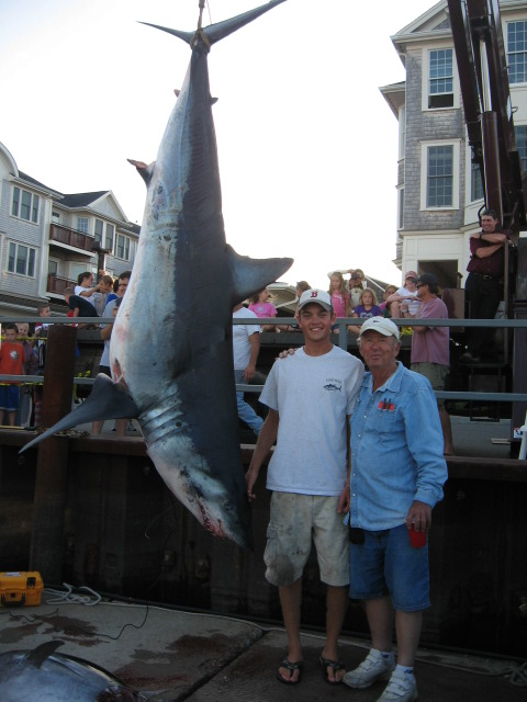 worlds Largest Male Mako Shark