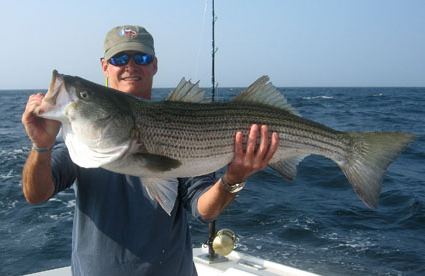 fishing trips in ma. for tuna, shark, striped bass and bottom fish, Fishing Reels