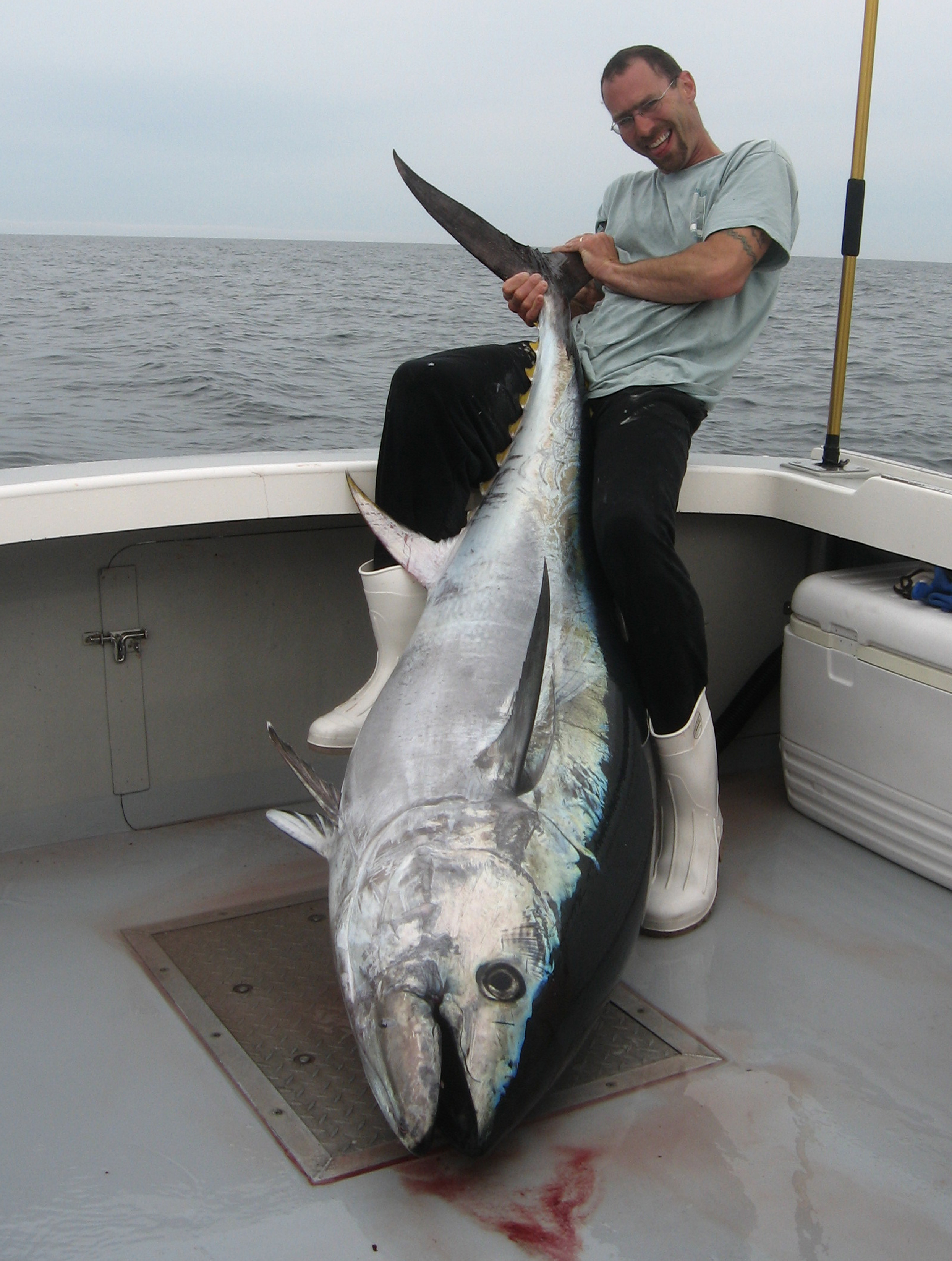 "kerry Miller with a 77"" Bluefin tuna caught June 5th 2009"
